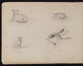 view Childhood sketchbook digital asset: page 4