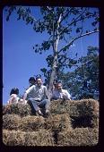 view Children on hay bales at Allan Kaprow's <em>Tree Happening</em> digital asset number 1