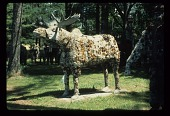 view Moose digital asset number 1