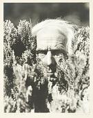 view Max Ernst digital asset number 1