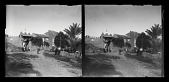 view Glass Plate Negatives and Lantern Slide digital asset: Glass Plate Negatives and Lantern Slide