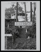 view Photograph of path leading to Howard Finster's Paradise Garden digital asset number 1