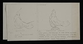 view Sketches of five turkeys on logs digital asset number 1