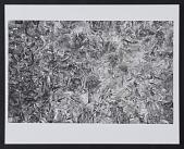 view Untitled by Robert Morris, 1956-1957 digital asset number 1