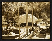 view Clark Theater designed by Jeffrey Lindsay, San Diego Zoo digital asset number 1