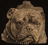 view Benson Bond Moore drawing of a bulldog head digital asset number 1