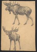 view Sketch of two moose digital asset number 1