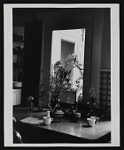 view Photograph of Gulliver, Emmy Lou Packard's cat digital asset number 1