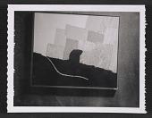 view Photograph of Forrest Bess' work digital asset number 1