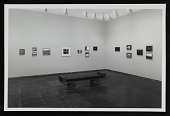 view Photograph of the <em>Forrest Bess</em> exhibition at the Whitney Museum of American Art digital asset number 1