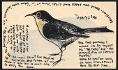 view Karl Priebe, Evansville, WI postcard to Klaus Perls, New York, N.Y. digital asset number 1