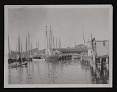 view Photograph of harbor with sailboats digital asset number 1