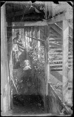 view John Smith, Helen and Christine Peto in the Greenhouse (unfocused) digital asset number 1