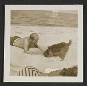 view Jackson Pollock on the beach with a dog digital asset number 1