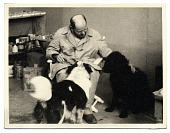 view Jackson Pollock with his dogs digital asset number 1