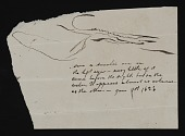 view Illustrated note concerning Hiram Powers's visions digital asset number 1