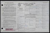view Cat Fancier's Association registration form for Kay Sage's cats digital asset number 1