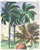 view Palm Trees at Senado digital asset number 1