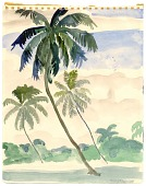 view Three Leaning Palm Trees digital asset number 1
