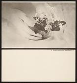 view Flower Arrangement book by Rudolph Schaeffer digital asset number 1