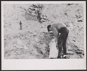 view Photograph of Robert Smithson gathering slate in Bangor, Pennsylvania digital asset number 1