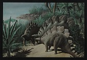view Giant postcard depicting stegosauraus digital asset number 1