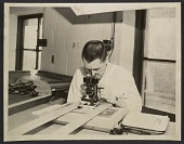 view George L. Stout in conservation lab looking through a microscope digital asset number 1