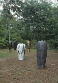 view Slide of 5 ceramic pots, vertical digital asset number 1
