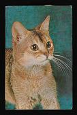 view Lenore Tawney postcard to Toshiko Takaeuzu digital asset number 1