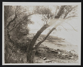 view Photograph of riverbank digital asset: front