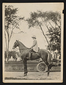 view Photograph of Mary Tarbell Schaffer on horse, Imperial Princess, at Tarbell House in New Castle, New Hampshire digital asset number 1