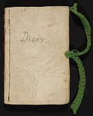 view Mary Thayer diary digital asset number 1