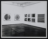 view Installation shots from Alma Thomas exhibition at Whitney Museum of American Art digital asset number 1