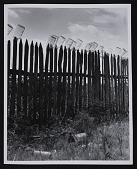 view <em>Fruit jars being sterilized on old lady Graham's back fence in berry season</em> digital asset number 1