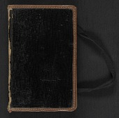 view Elihu Vedder travel diary digital asset: cover
