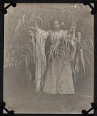 view Bessie Potter Vonnoh standing among corn stalks digital asset number 1