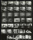 view Katharine Weems working on <em>Dolphins of the sea</em> and photographs of her sculpture <em>Greyhounds unleashed</em> digital asset number 1