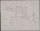 view Scale drawing of rhinoceros sculpture digital asset number 1