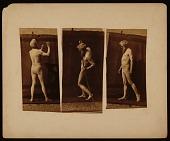 view Triptych of Eadweard Muybridge digital asset: Triptych of Eadweard Muybridge