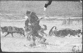 view Eskimos digital asset: Eskimos