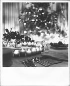 view Photographs of Unidentified Party (Aline and Eero Saarinen and Children in attendance) digital asset: Photographs of Unidentified Party (Aline and Eero Saarinen and Children in attendance)