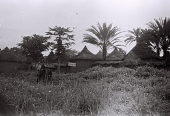 view Field Work in the Floodplains of the Niger and Kaduna Rivers, Northern Region (Nigeria): Traditional Nupe Village with Round Houses Topped by Conical Thatched Roofs digital asset: Field Work in the Floodplains of the Niger and Kaduna Rivers, Northern Region (Nigeria): Traditional Nupe Village with Round Houses Topped by Conical Thatched Roofs