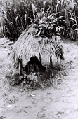 view Field Work in Benin (formerly, Dahomey): Shrine (?) digital asset: Field Work in Benin (formerly, Dahomey): Shrine (?)