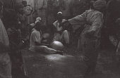 view Field Work in Ibadan, Western Region (Nigeria): Musicians Accompanying Female Dancer digital asset: Field Work in Ibadan, Western Region (Nigeria): Musicians Accompanying Female Dancer