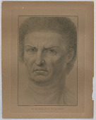 view A Man's Head, Large Front Face digital asset number 1