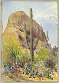 view Tucson, Arizona digital asset number 1