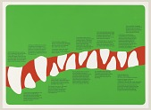 view The Bronx Zoo: Crocodile Teeth digital asset number 1