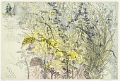 view Coloured Undergrowth digital asset number 1