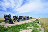view Cadillac Ranch, Cars digital asset number 1