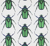 view Beetle digital asset number 1